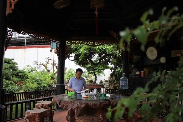 Tay chơi Hà Nội bán nhà trên phố để sở hữu cây tùng hơn 300 năm tuổi - 4