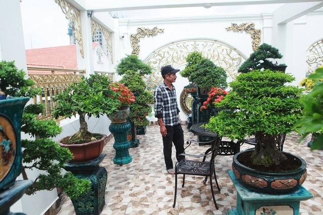 """Nghệ nhân Hà Nội bật mí về bonsai kích thước nhỏ nhưng giá """"khủng"""" - 3"""