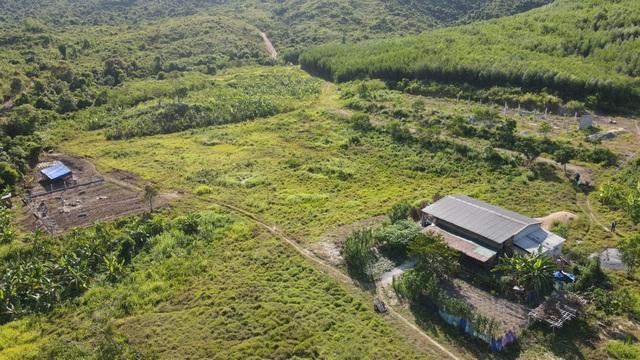 Thảm cảnh trang trại bò rộng gần 250 ha chỉ nuôi… mấy con bò! - 1