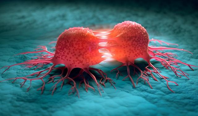 Con người đang ở đâu trong cuộc chiến với ung thư? - 1