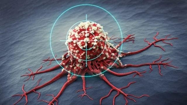 Con người đang ở đâu trong cuộc chiến với ung thư? - 5