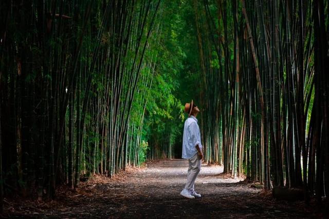 Hành trình tìm về vẻ đẹp hoang sơ nơi phố núi Buôn Ma Thuột - 7