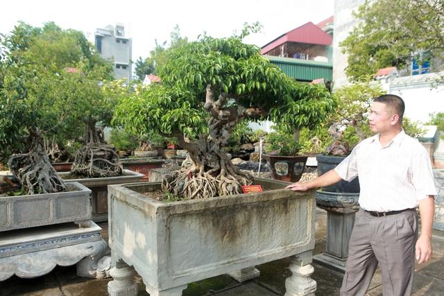 Vườn sanh cổ xứ Huế có giá triệu USD của đại gia Vĩnh Phúc - 2