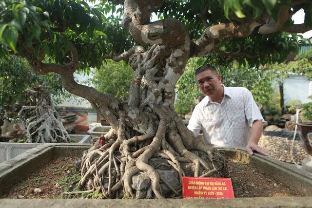 Vườn sanh cổ xứ Huế có giá triệu USD của đại gia Vĩnh Phúc - 3