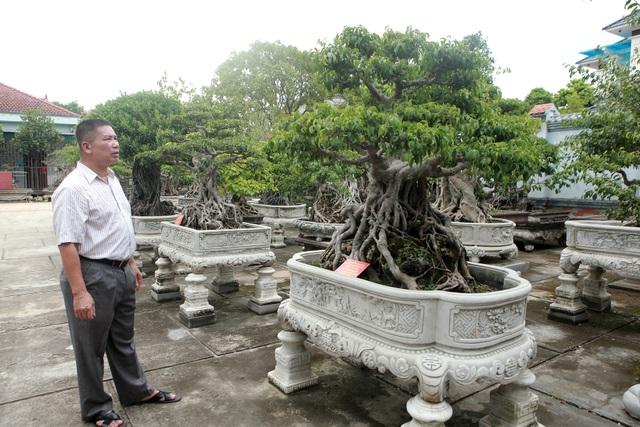 Vườn sanh cổ xứ Huế có giá triệu USD của đại gia Vĩnh Phúc - 8