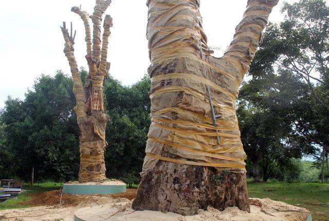 Bị phát hiện, đối tượng vận chuyển cây quái thú bỏ lại cây để tháo chạy - 4