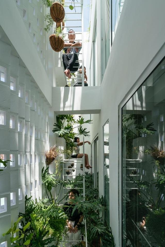 Ngôi nhà có khu vườn treo độc đáo khiến gia chủ ở nhà cả ngày không chán - 6