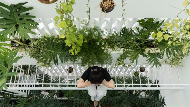 Ngôi nhà có khu vườn treo độc đáo khiến gia chủ ở nhà cả ngày không chán - 7