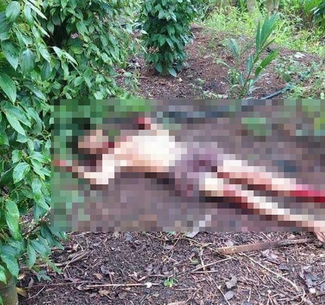 Điều tra vụ người đàn ông chết bất thường trong vườn tiêu - 1