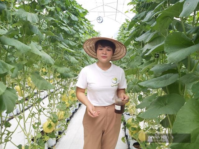Bỏ nghề báo, chàng trai Hà Nội về quê trồng dưa lưới, mỗi năm thu hơn 2,1 tỷ đồng - 11