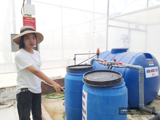 Bỏ nghề báo, chàng trai Hà Nội về quê trồng dưa lưới, mỗi năm thu hơn 2,1 tỷ đồng - 7