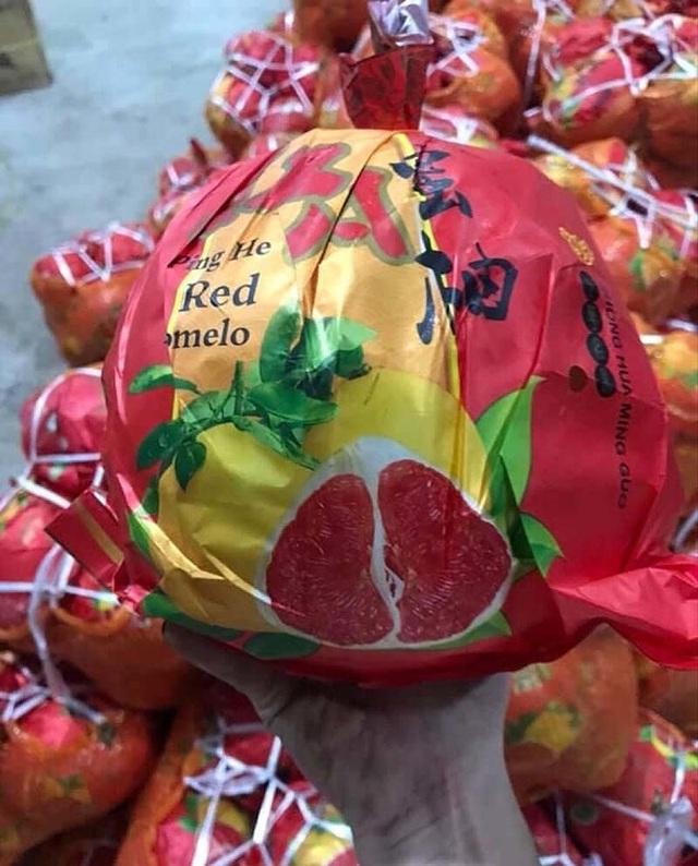 Bưởi Trung Quốc ruột đỏ au: Vỏ vàng không hạt, ngày bán cả tấn - 2