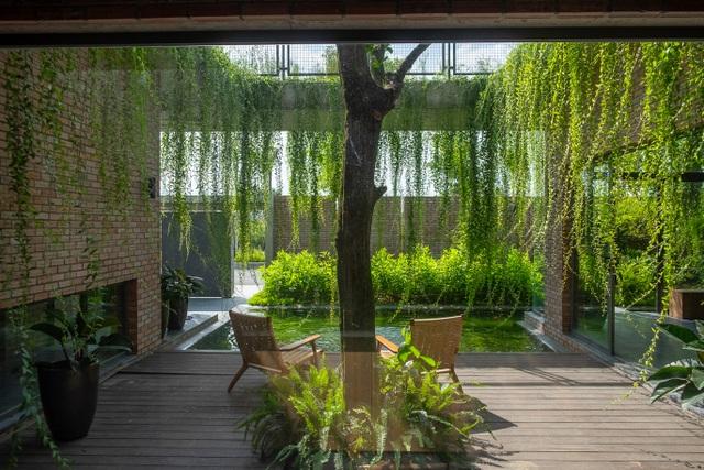 Chiêm ngưỡng ngôi nhà gạch độc đáo với hệ thống cây xanh bao phủ - 5