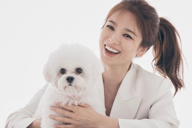 """Song Hye Kyo - Mỹ nhân bị quy luật lão hoá """"bỏ quên"""" - 18"""