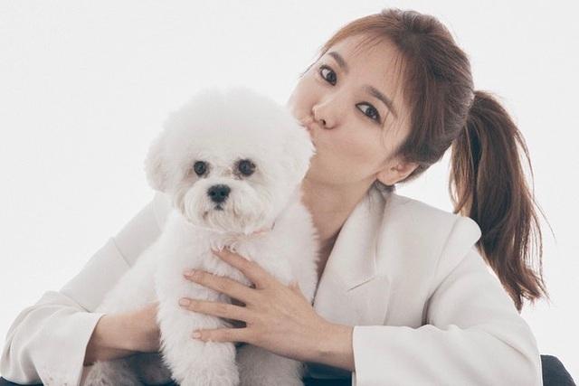 """Song Hye Kyo - Mỹ nhân bị quy luật lão hoá """"bỏ quên"""" - 19"""