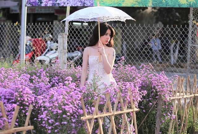 """Náo nức """"check in"""" vườn hoa thạch thảo tím """"lịm tim"""" ở Đà Nẵng - 8"""
