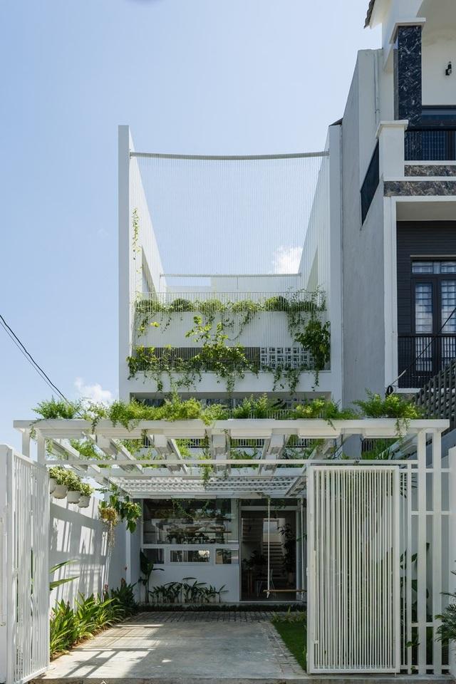 Ngôi nhà có không gian như công viên cây xanh ở ngoại ô Đà Nẵng - 9