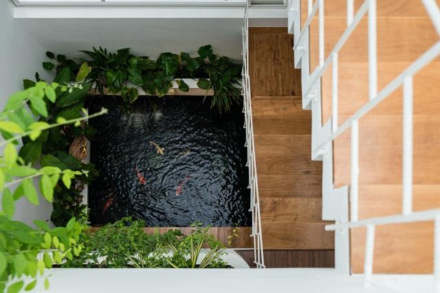 Ngôi nhà có không gian như công viên cây xanh ở ngoại ô Đà Nẵng - 4