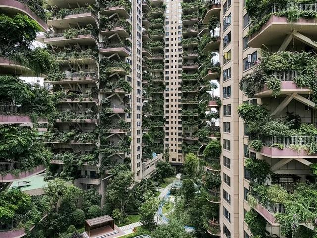 """""""Thiên đường sinh thái"""" của Trung Quốc hóa thành phố ma, vì sao? - 2"""