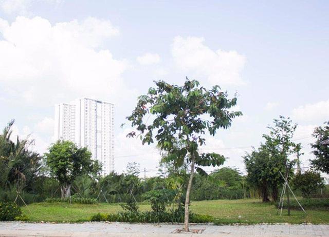 Khám phá biệt thự 300m2, giá triệu đô của NSƯT Kim Tử Long - 3