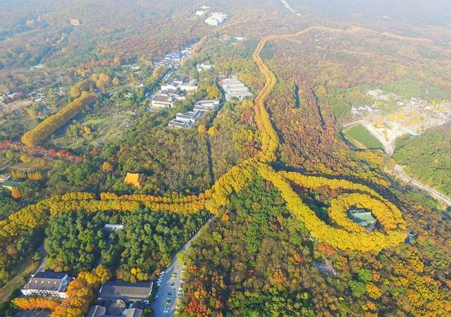 Cung điện hình viên ngọc khổng lồ biểu tượng tình yêu ở Trung Quốc - 1