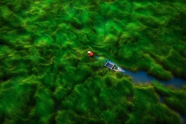 Vẻ đẹp ngoạn mục của Việt Nam nhìn từ trên tầm cao - 9