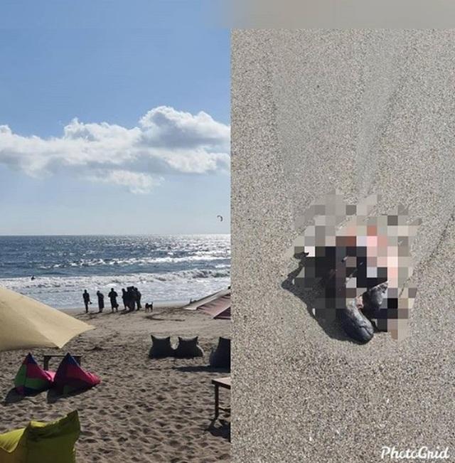 Hoảng hồn phát hiện... bàn chân người trôi dạt bờ biển - 1