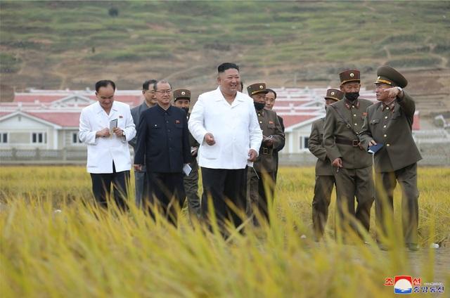 Ông Kim Jong-un thị sát vùng lũ, em gái xuất hiện sau nhiều đồn đoán - 1