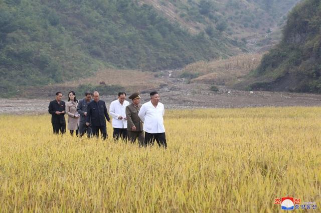 Ông Kim Jong-un thị sát vùng lũ, em gái xuất hiện sau nhiều đồn đoán - 2