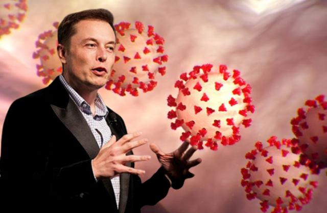 Xem nhẹ Covid-19, Elon Musk tuyên bố sẽ không tiêm vắc-xin phòng bệnh - 1
