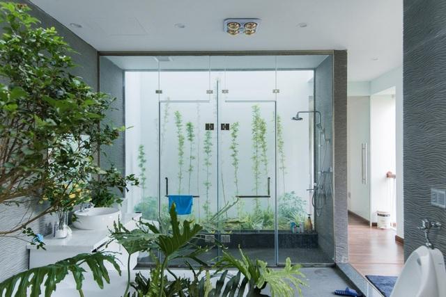 Gia đình Thanh Hóa mua 6 nhà hàng xóm, xây nhà vườn rộng 700m2 giữa phố - 10