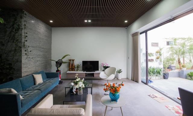 Gia đình Thanh Hóa mua 6 nhà hàng xóm, xây nhà vườn rộng 700m2 giữa phố - 6