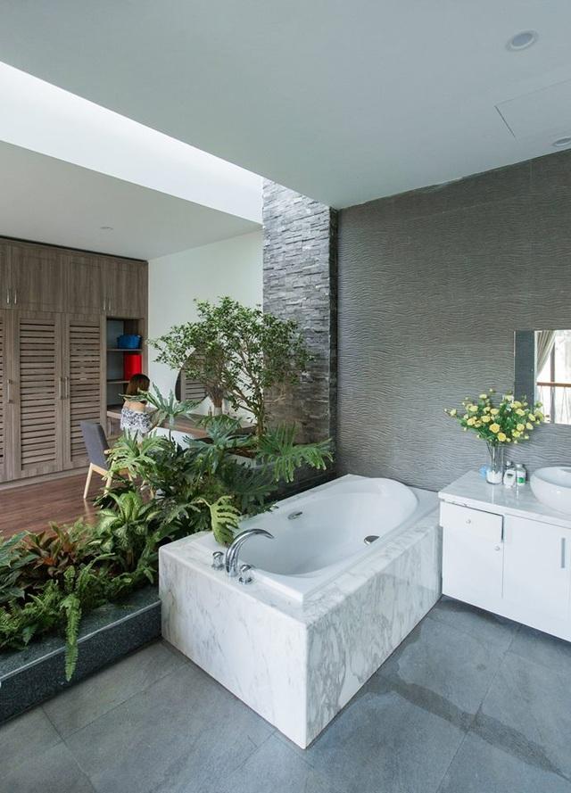 Gia đình Thanh Hóa mua 6 nhà hàng xóm, xây nhà vườn rộng 700m2 giữa phố - 13