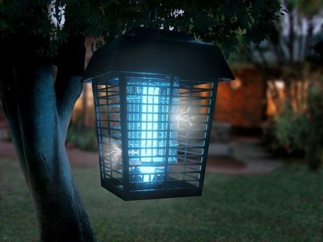 Đèn bắt muỗi có thực sự hiệu quả như quảng cáo? - 1