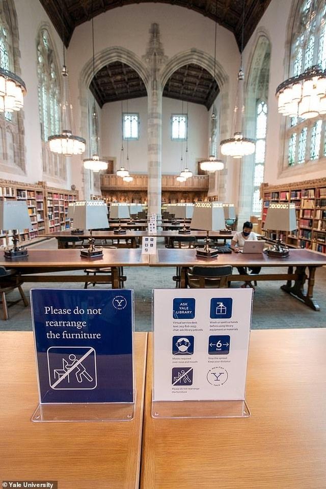 Đại học Harvard, Yale lập web thống kê số ca mắc Covid-19 tại các trường Mỹ - 1