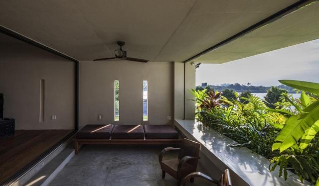 Khu vườn tuyệt đẹp ẩn trong nhà khiến chủ nhân muốn buồn cũng khó - 11