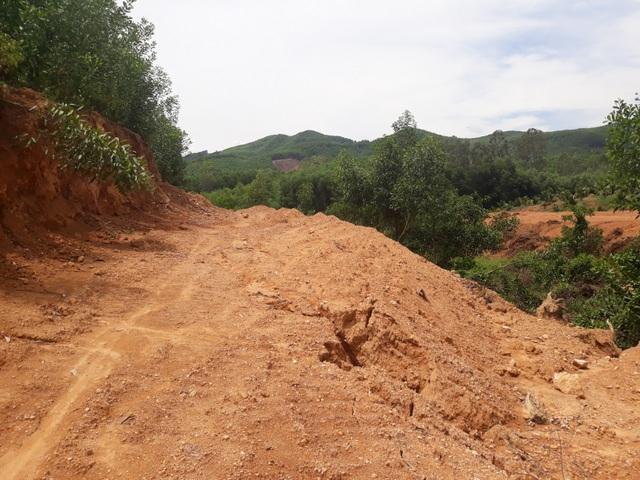 Bình Định: Tự ý san ủi, mở đường đe doạ hồ thủy lợi, người dân hoang mang - 2