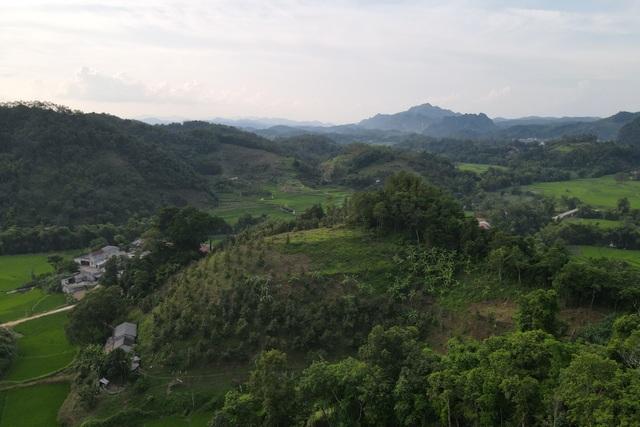 Cảnh thu hoạch hồng vành khuyên trên núi cao vùng biên ải - 7