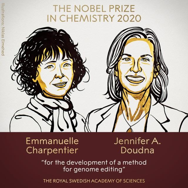 Nobel Hóa học vinh danh 2 nhà khoa học nữ với nghiên cứu về chỉnh sửa gen - 1