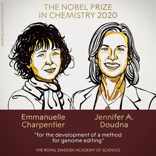 Chìa khóa nào giúp hai nữ Tiến sĩ giành giải Nobel Hoá học năm 2020? - 2