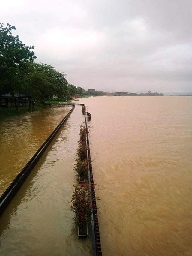 Mưa cực lớn, nước ngập ngang người, cây đổ la liệt - 12