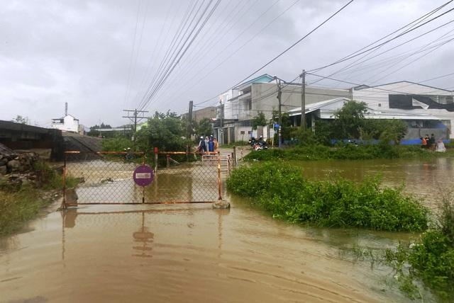 Mưa cực lớn, nước ngập ngang người, cây đổ la liệt - 4