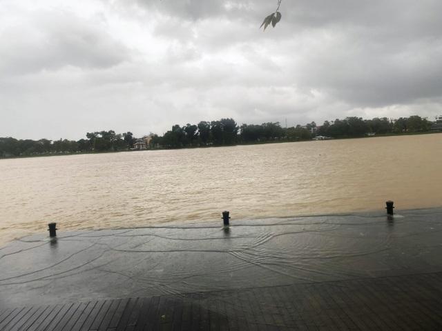 Mưa cực lớn, nước ngập ngang người, cây đổ la liệt - 8