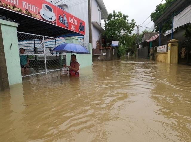 Mưa cực lớn, nước ngập ngang người, cây đổ la liệt - 6