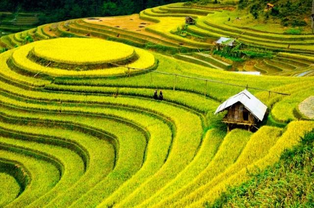 Việt Nam đứng thứ hạng cao trong số các nước du lịch tuyệt nhất năm 2020 - 1