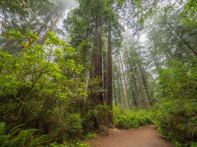 30 kỳ quan thiên nhiên đẹp nhất thế giới - 28