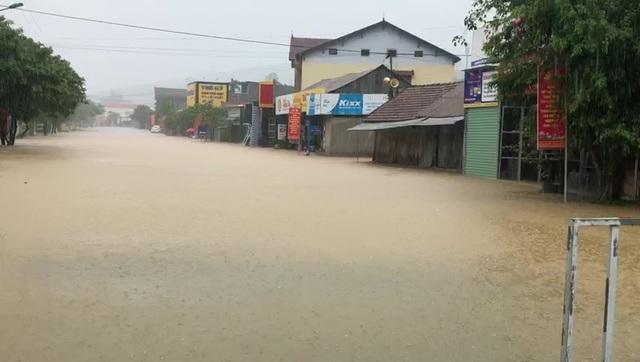 Mưa cực lớn, nước ngập ngang người, cây đổ la liệt - 13