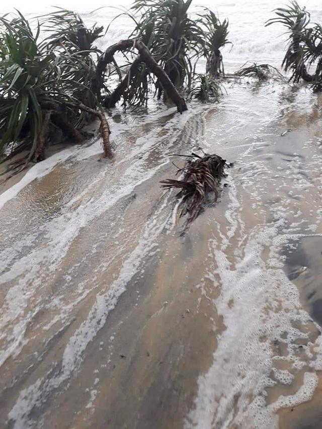 Nước sông Hương gần tràn bờ, TP Huế ngập mênh mông - 8