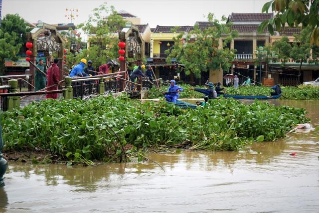 Người dân đổ ra đường giăng lưới bắt cá giữa lũ lớn - 2