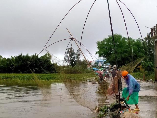 Người dân đổ ra đường giăng lưới bắt cá giữa lũ lớn - 7